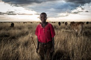 A young Maasai herder brings his cows to his boma (homestead) for the evening. Human population increases in Kenya has led to competition between cattle and wildlife for pasture and water. © Will Swanson for Al Jazeera English